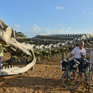 La Loire à Vélo, Serpent d'Océan, oeuvre de l'artiste Huang Yong Ping, pointe du Nez de chien, Saint Brevin les Pins, dep44, Pays de La Loire, France
